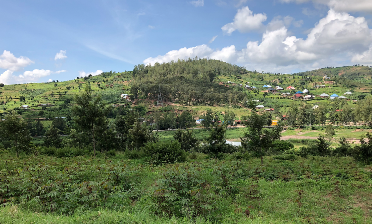 Met een microkrediet heeft Charles Nyandwi zijn plantage uitgebreid
