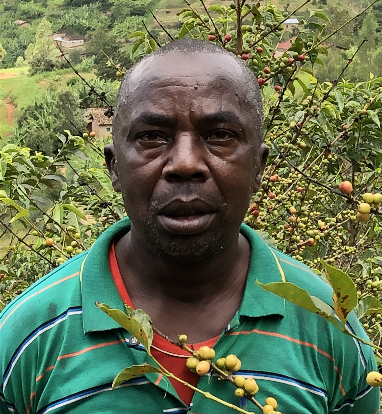 Vénuste Ndimukaga | koffieplantage | €1.000,-